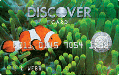 Discover® More® Card - Sealife Collection